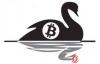 """【蜗牛娱乐】加密货币市场存在的""""黑天鹅""""风险"""